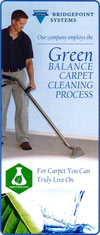 Green Balance Carpet Cleaning Process Brochure